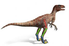 Dromaeosaurus_1.jpg