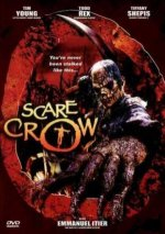 DVD_cover_of_the_2002_movie_Scarecrow.jpg