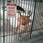 Remember-Don-t-Feed-the-Trolls-fanpop-22675482-324-324.jpg